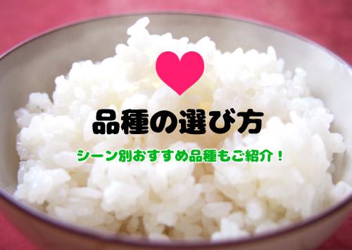 f:id:yentame_02:20171102125003j:plain