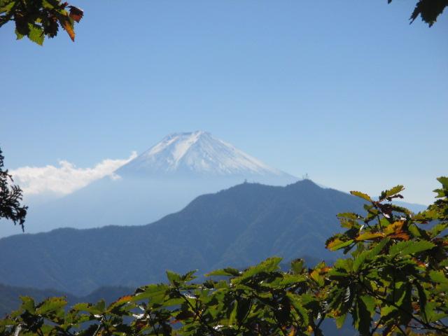 滝子山から富士山