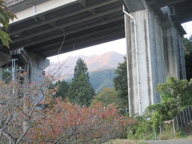 滝子山山頂