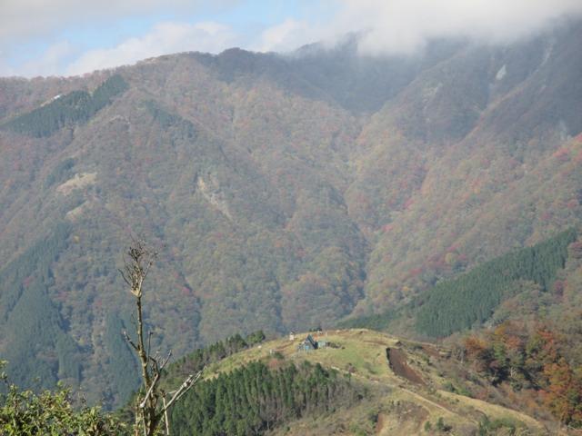 塔ノ岳烏尾山