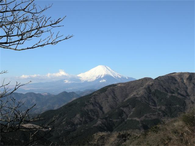 丹沢の大山富士見坂
