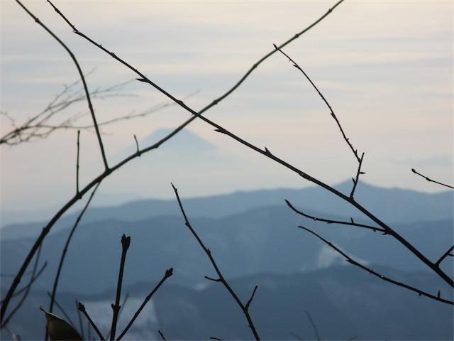 大岳山山頂からの富士山