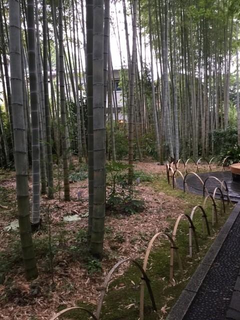 f:id:yfukushima21:20170815164445j:image