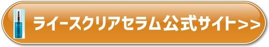 f:id:yhanamizuki:20180727060207j:plain