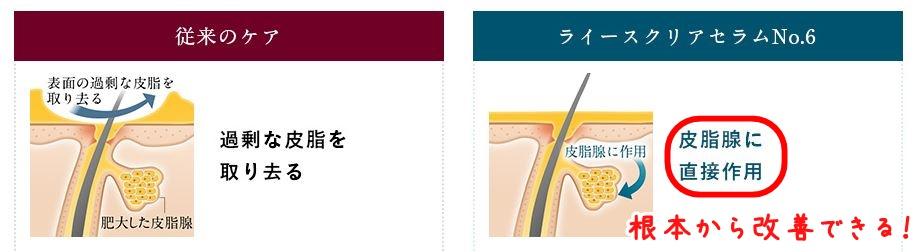 f:id:yhanamizuki:20180729063516j:plain