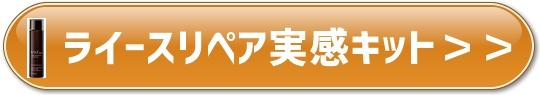 f:id:yhanamizuki:20180802063704j:plain