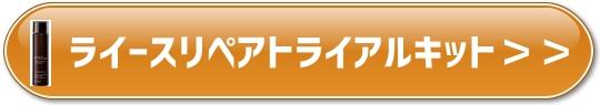 f:id:yhanamizuki:20180802064004j:plain