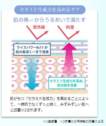 f:id:yhanamizuki:20180806160536p:plain