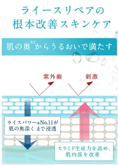 f:id:yhanamizuki:20180813153539j:plain