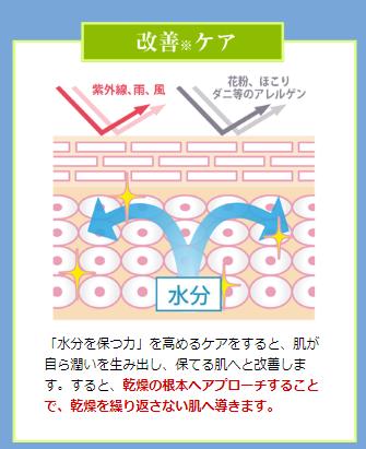 f:id:yhanamizuki:20180926104611p:plain