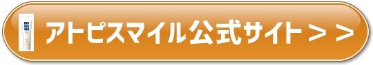 f:id:yhanamizuki:20181128053809j:plain