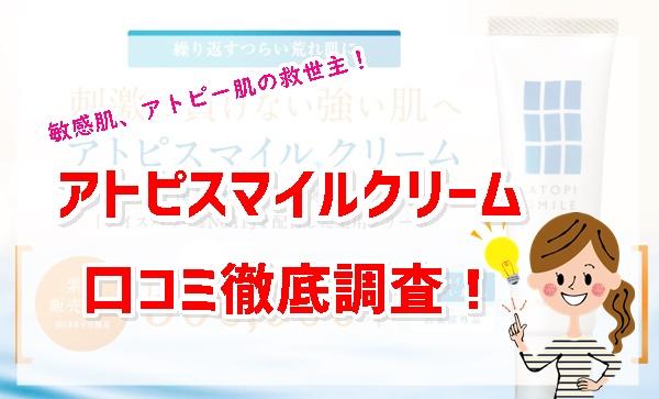 f:id:yhanamizuki:20181128055040j:plain