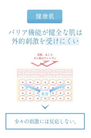 f:id:yhanamizuki:20181128055725j:plain