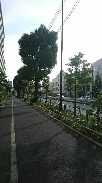 f:id:yhoujou172:20171008084625j:image