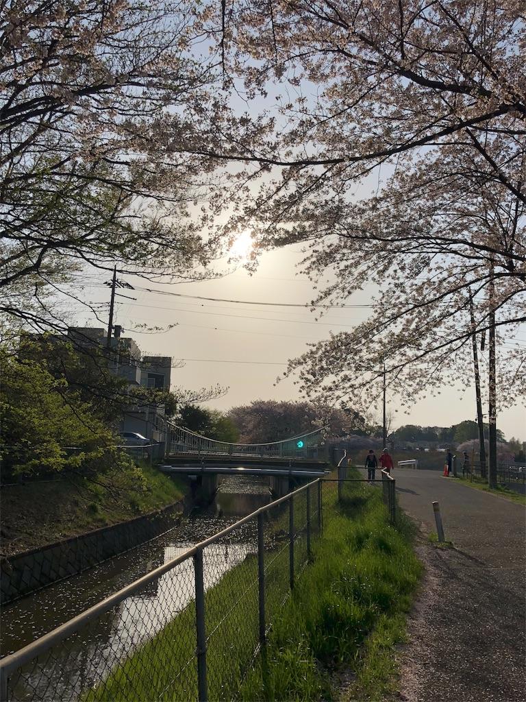 f:id:yhoujou172:20180331224654j:image