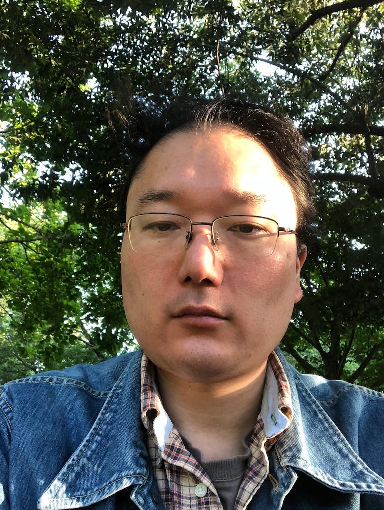 f:id:yhoujou172:20180522172535j:image