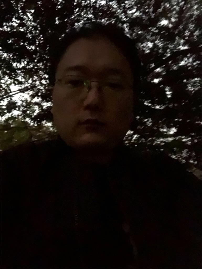 f:id:yhoujou172:20181119171036j:image