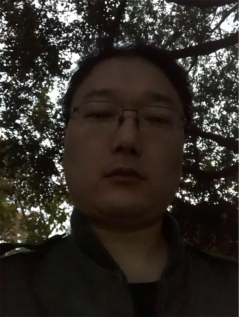 f:id:yhoujou172:20181128170250j:image
