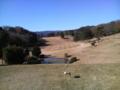新天城にっかつゴルフクラブ 里見4ホール