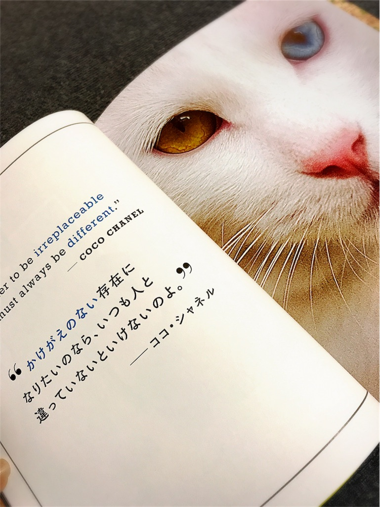 f:id:yingtianyou:20171019194245j:image