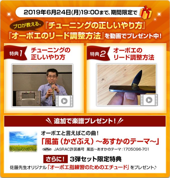 f:id:yippee-ryo-ohashi-1111:20190620000027p:plain