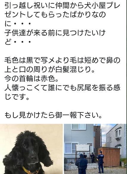 f:id:yippee-ryo-ohashi-1111:20191112011848p:plain