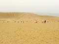 砂丘日和(曇り空で前日は雨)