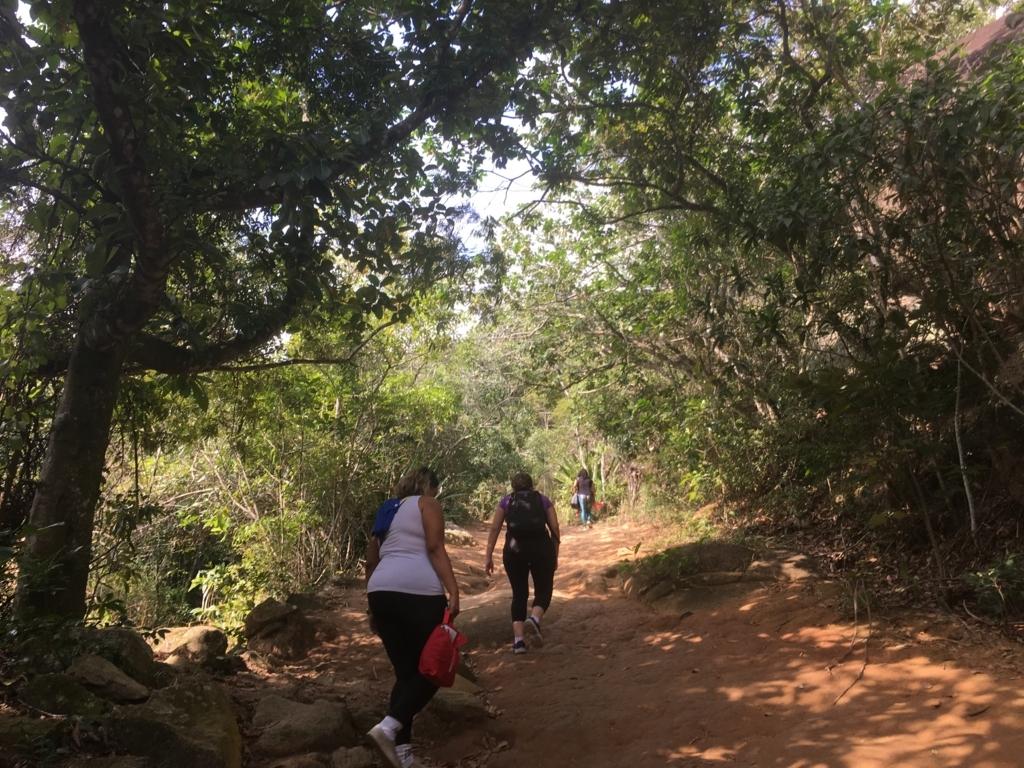 ペドラドテレグラフォの登山道