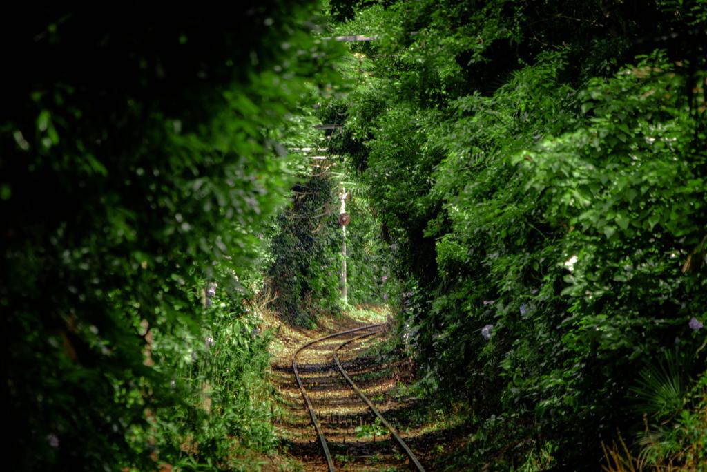 本銚子駅の恋のトンネル