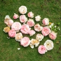バラ(ピエールドゥロンサール)花がら44個20160608