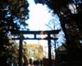 [photo]Meiji Jingu
