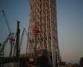 [photo]Tokyo Sky Tree is 368 meters high on 2010/05/16