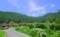 京都新聞写真コンテスト 里の原風景②