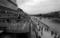 黄昏の鴨川辺り