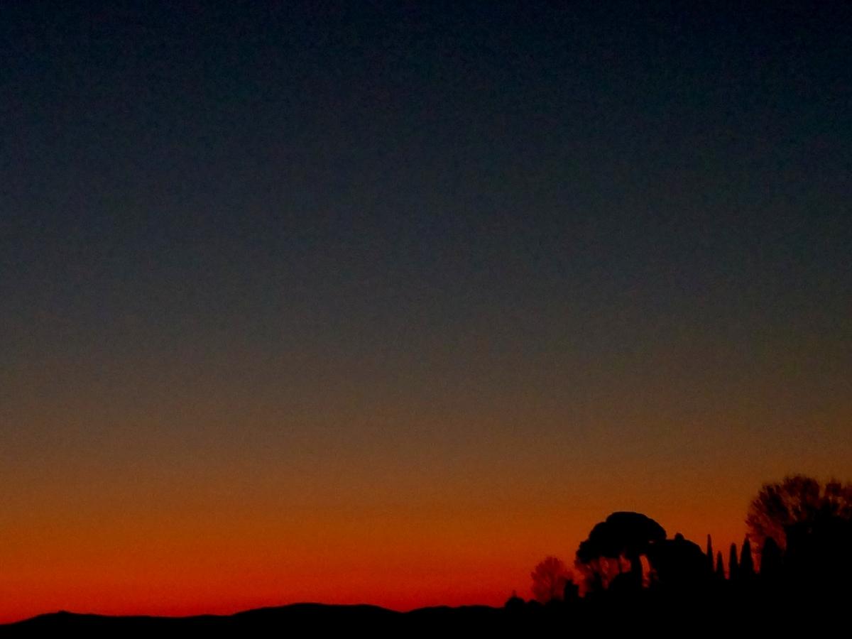 f:id:yluna:20200406002006j:plain