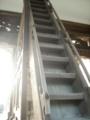 [階段]尾山神社