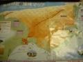[鳥取砂丘]地図