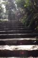 [階段]弥山