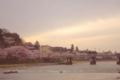 [空][花]桜と川