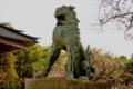[尾山神社]狛犬