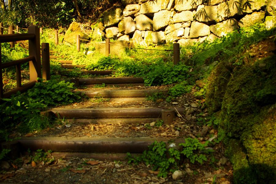 [階段][金沢城址公園]