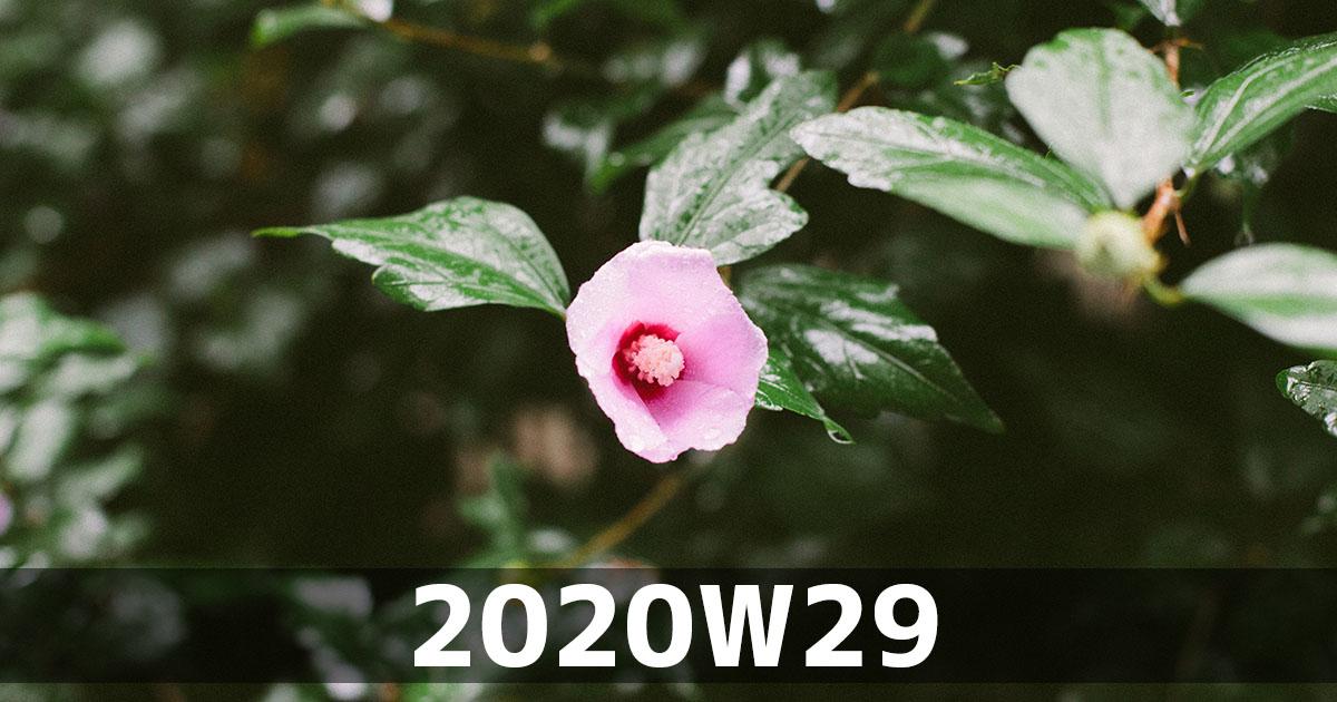 f:id:ymmtdisk:20200720233843j:plain