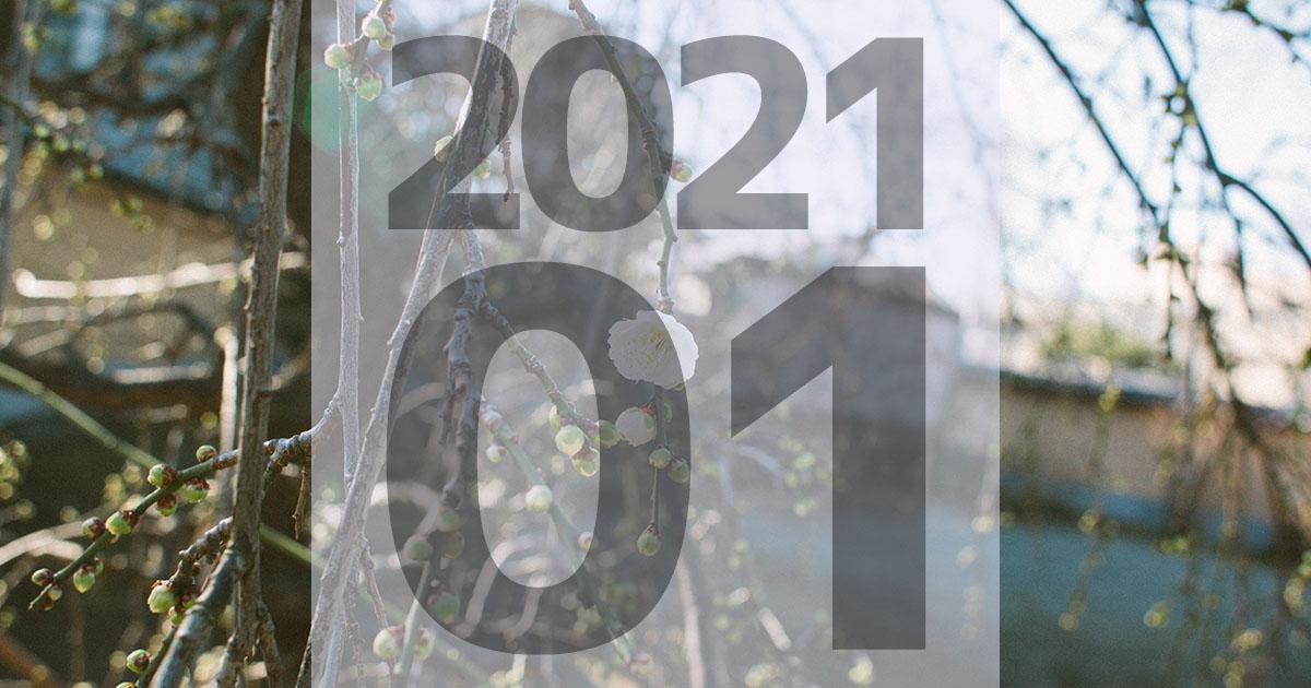 f:id:ymmtdisk:20210209204055j:plain