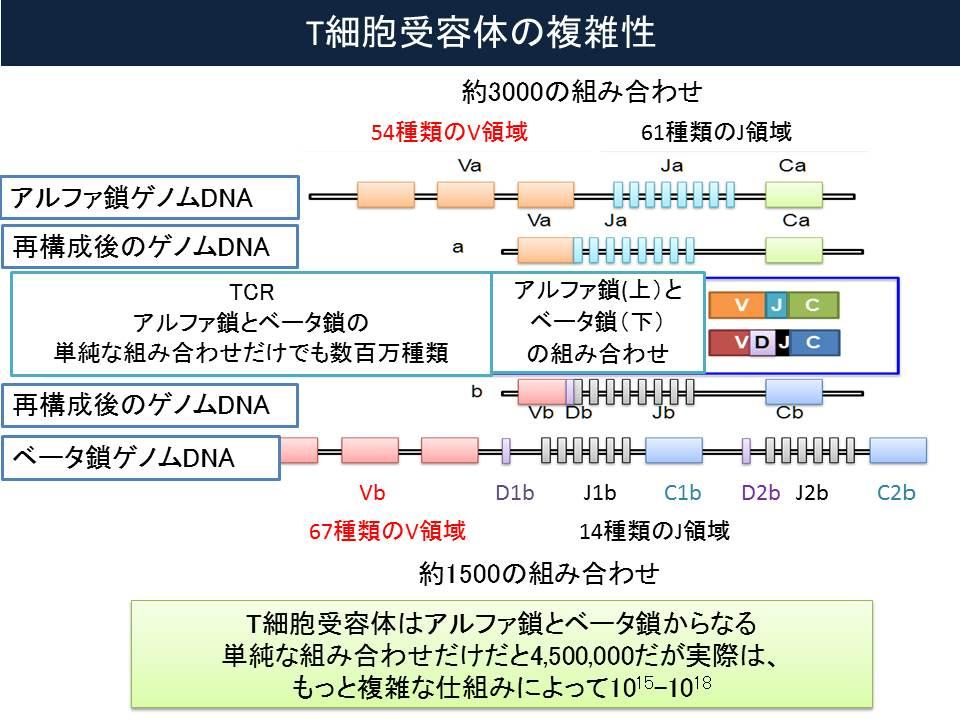 f:id:ynakamurachicago:20171224053004j:plain