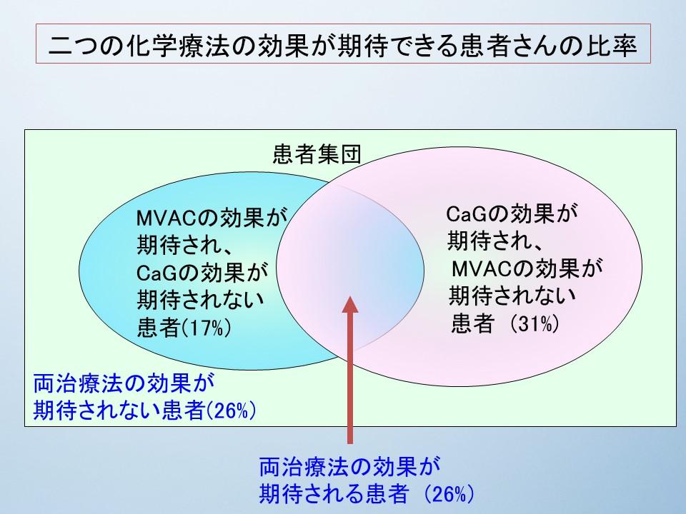 f:id:ynakamurachicago:20180625231400j:plain