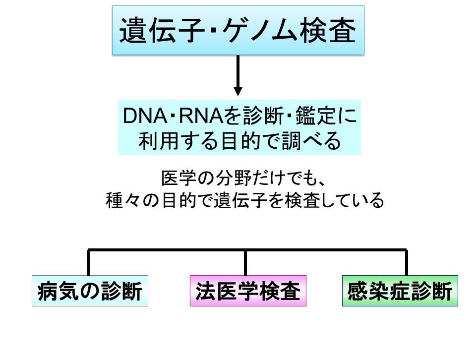 f:id:ynakamurachicago:20190216203340j:plain