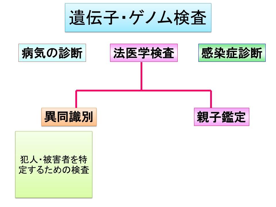 f:id:ynakamurachicago:20190216203436j:plain