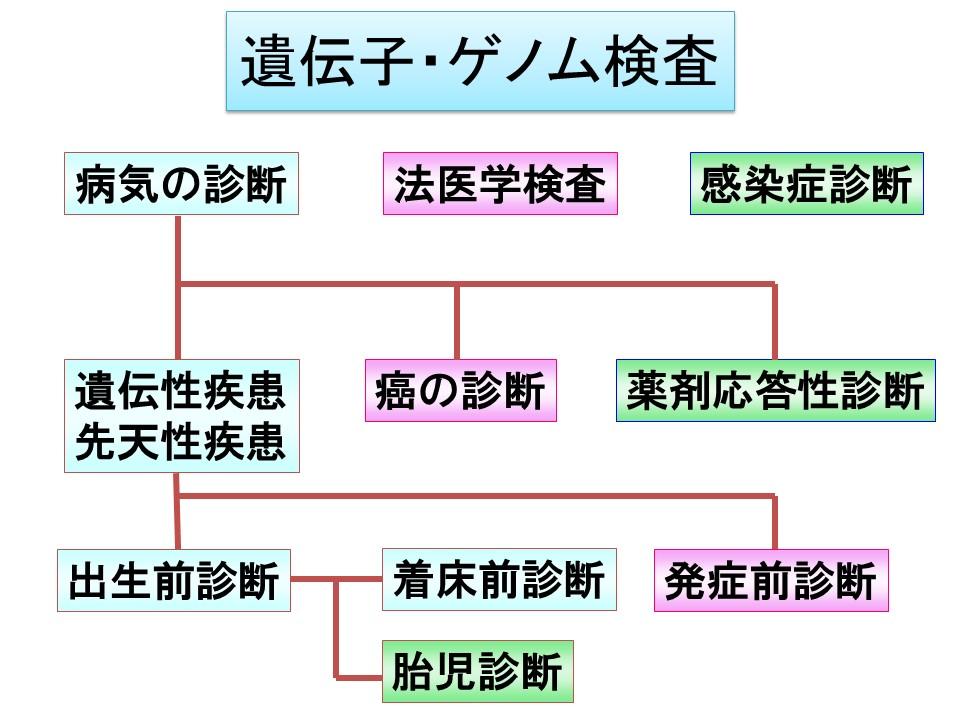f:id:ynakamurachicago:20190221210602j:plain