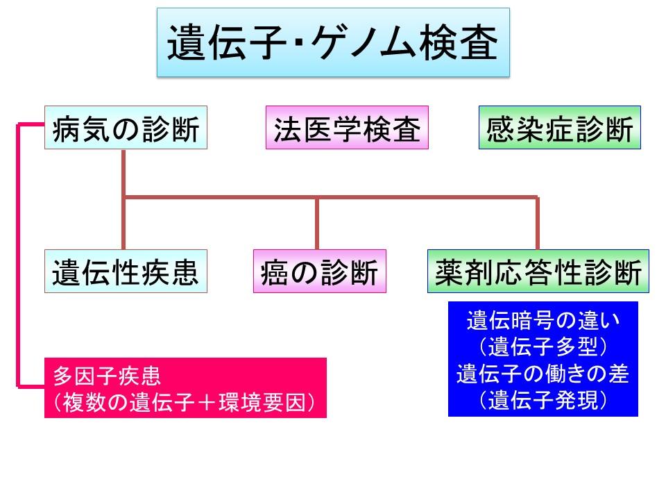f:id:ynakamurachicago:20190221210647j:plain