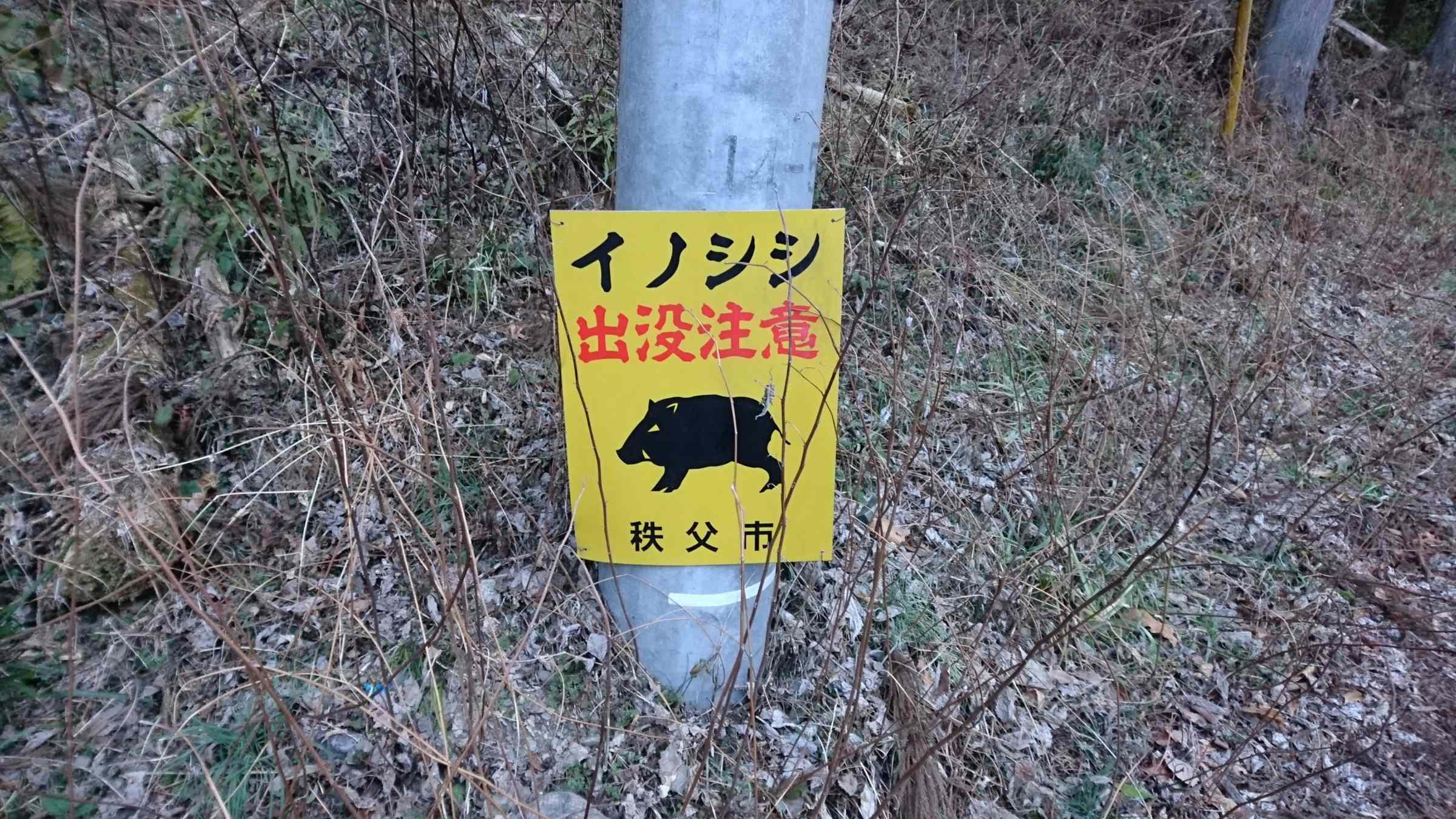 f:id:ynakayama27:20170206153738j:plain